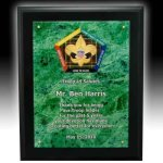 Acylic Faceplate Plaque Acrylic Awards | Acrylic Trophies